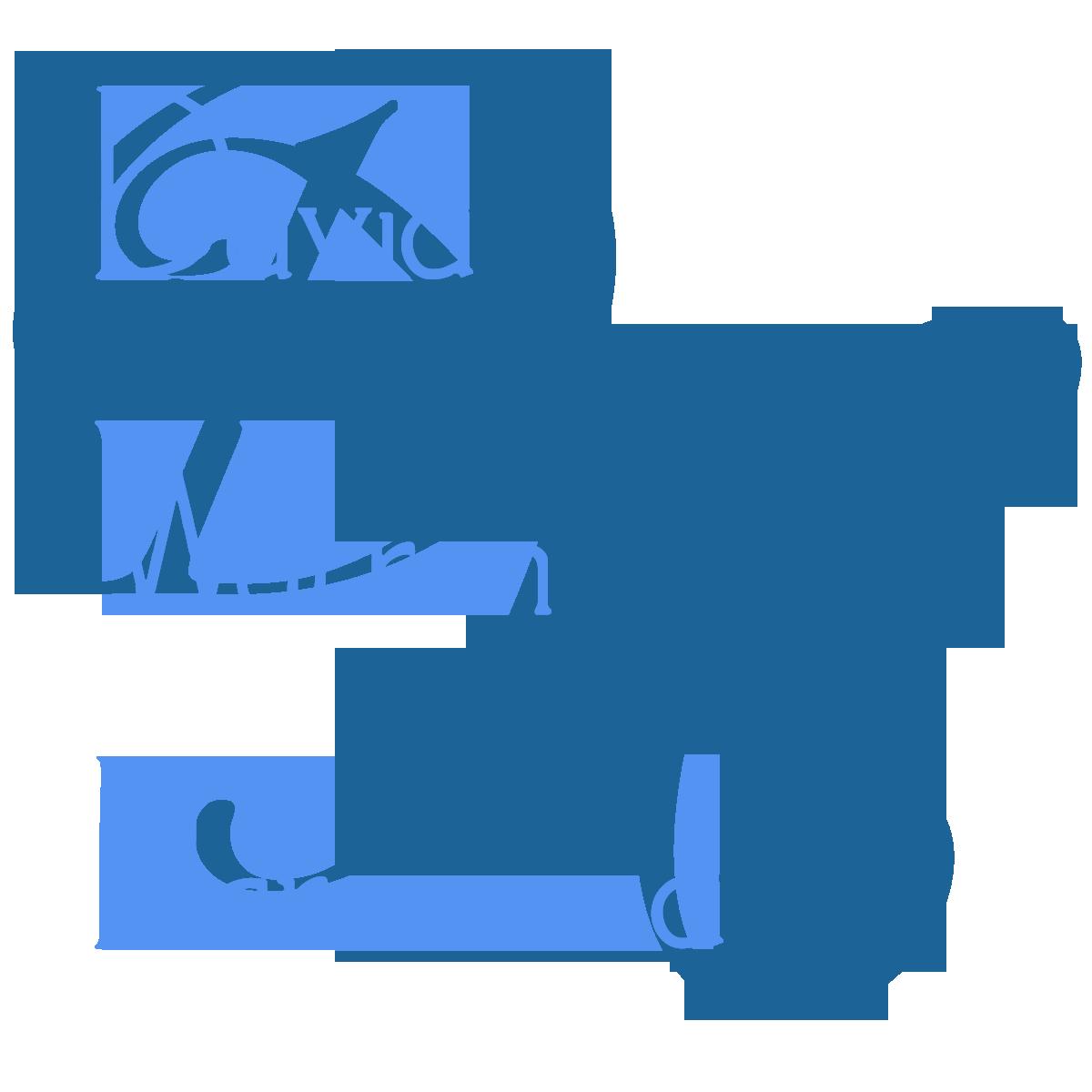 David Warren Harewood